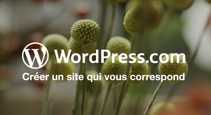 Video: French WordPress.com Ad